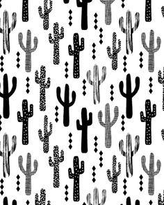 Cactus desert southwest palm springs festival house plant succulent terrarium…