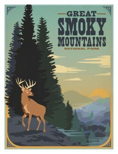 Great Smoky Mountains Deer Print by Anderson Design Group at AllPosters.com