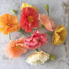 """56 Likes, 12 Comments - Suzonne Stirling (@suzonnestirling) on Instagram: """"Flower practice.  #paperflowers"""""""
