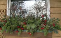Holiday Decorating Guide! - By Plants Unlimited - Belfast - Waldo - Republican Journal
