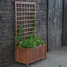 Large And Tall Wood Herb Planter Box With Trellis And Wheels Painted With Brown Color Ideas, Wood Planter Boxes Garden and Patio Herb Planter Box, Planter Box Centerpiece, Planter Box With Trellis, Wood Trellis, Herb Planters, Wooden Planters, Garden Trellis, Planter Boxes, Planter Ideas