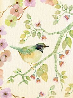 Blossom by Colleen Parker, via Flickr