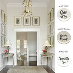 Paint Color Ideas For Classic Style   The Havenly Blog