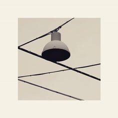 #blackandwhite #bw #photography #square #bologna #bolognacittà #rete #ragnatela #cielo #web #sky #eos7d #spider #ragno #bolognaart #fish #pesce