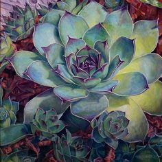 Succulents IV by Jennifer Bellinger, Oil, 18 x 18 Succulents Drawing, Watercolor Succulents, Watercolor Flowers, Watercolor Paintings, Watercolours, Succulents Painting, Art Floral, Botanical Art, Botanical Illustration
