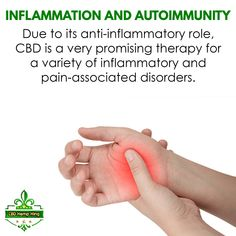 Inflammation and Autoimmunity: Due to its anti-inflammatory role, CBD is a very promising therapy for a variety of inflammatory and pain-associated disorders. Hemp, Disorders, Therapy, King, Counseling