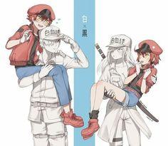 No encuentras muchas imágenes o … # Ngẫu nhiên # amreading # books # wattpad Manga Anime, Film Anime, Yuri Anime, Anime Meme, Fan Art Anime, Animes Wallpapers, Cute Anime Couples, Anime Ships, Kaito