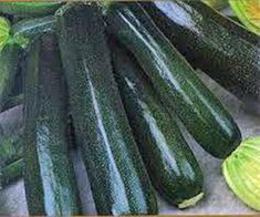 ZUCCHINI, SQUASH, BLACK BEAUTY, HEIRLOOM, ORGANIC, 25+ SEEDS, DELICIOUS HEALTHY NON-GMO. HEIRLOOM. GROWN NATURALLY WITHOUT THE USE OF CHEMICALS AND PESTICIDES AT MY SEED FARM, HARVESTED AND PACKAGED BY HAND IN RESEALABLE AIR TIGHT BAGS (EACH BAG IS INDIVIDUALLY LABELED).  EACH PURCHASE INCLUDES A  FULL PAGE SEED FACT SHEET AND PLANTING/GROWING INSTRUCTIONS.  ALL SEED LOTS ARE TESTED FOR GERMINATION.  LAST GERMINATION TEST 90 PERCENT.   Black Beauty  is one of the the more popular  Zucchini…