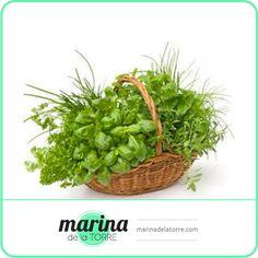Las hierbas aromáticas no sólo ensalzan la complejidad de tus comidas, ¡sino que también mejoran su valor nutricional!