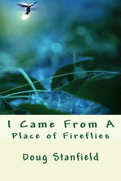 I Came From A Place of Fireflies    Synopsis : This volume is about a lifetime of accidents –disguised as intentions–finally getting the attention they deserve. The poems, and one short story, are a search for a common human thread– an experiment and an act of faith. The author has been a newspaper reporter and editor; white-collar crime investigator; small business owner, and a cog in the bureaucratic machinery of the higher education industry. Very lit