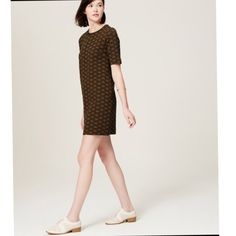 Worn 1x Loft Deco pattern Flattering Shift Dress Super comfy, purchased in Dec to wear to party, super comfy, good quality knit, flattering and forgiving especially around the holidays, effortless and chic, bronzey brown, black or super dark navy LOFT Dresses Mini