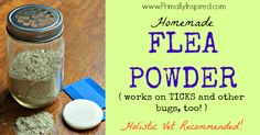 Homemade Flea Powder - Ditch the toxic chemicals that are dangerous for both you & your pet (dog). Instead, make this homemade holistic flea powder that repels and kills fleas and ticks. Flea Powder For Dogs, Natural Flea Control, Neem Powder, Flea Remedies, Natural Remedies, Healthy Holistic Living, Healthy Living, Powder Recipe, Flea And Tick
