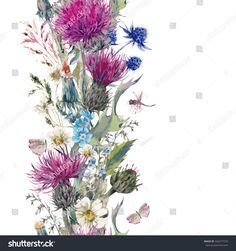 Vintage watercolor vertical herbal seamless border with Blooming Meadow Flowers-Thistles Dandelions Meadow Herbs, Chamomile and Dragonfly Botanical Floral Vector Vintage Isolated Illustration on White