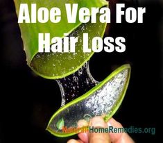 25 Ideen Hair Fall Remedy Diy Aloe Vera - Best Hairstyles & Haircuts for Men and Women in 2019 Hair Fall Remedy Home, Home Remedies For Hair, Hair Loss Remedies, Hair Fall Solution, Be Natural, Going Natural, Natural Health, Aloe Vera For Hair, Brunette To Blonde
