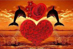 Beautiful Love Images, Most Beautiful Butterfly, Beautiful Nature Wallpaper, Animals Beautiful, Heart Wallpaper, Love Wallpaper, Disney Wallpaper, Dolphin Photos, Dolphin Art