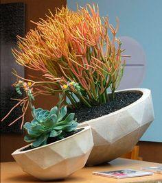 cast concrete planters by Kelly Lamb