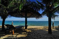 Thien Phat Beach Resort is a comfortable, mid-level beachfront resort located on Mui Ne beach, Phan Thiet. Here you can enjoy fine dining, relaxation and the luxury service that we offer guests from Vietnam and around the world.  # http://thebeachfrontclub.com/beach-hotel/asia/vietnam/mui-ne/mui-ne-beach-4/tien-phat-beach-resort/