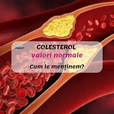 Colesterol-valori normale. Profil lipidic înseamnă:colesterol total,LDL-colesterol,HDL-colesterol, trigliceride.Care sunt valorile normale? Breakfast, Healthy, Food, Lose Weight In A Month, Cholesterol, Weights, Varicose Veins, Morning Coffee, Essen