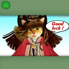 Greeting card template for everyday warm wishes, cute, cat