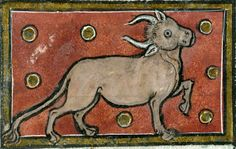 one-eyed bullThomas of Cantimpré, Liber de natura rerum, France ca. 1290Valenciennes, Bibliothèque municipale, ms. 320, fol. 82r)