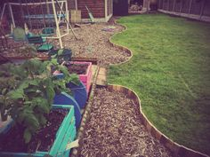 Pallet lawn edging Wood Garden Edging, Lawn Edging, Lawn And Garden, Grass Edging, Garden Borders, Drought Resistant Grass, Small Front Gardens, Wood Pallets, Pallet Wood