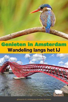 Deze wandeling in Amsterdam langs het IJ levert alleen maar hoogtepunten op. De route gaat door groene stadsparken. Daarnaast ontdek je de dorpse sfeer op de prachtige Nieuwendammerdijk. Twee ouderwetse trekpontjes en de imposante Oranjesluizen brengen je over het water. Even later maak je kennis met de moderne architectuur langs het IJ. Genieten van begin tot het einde!