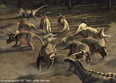 Herd of Triceratops defending their youngs from 2 interloping Tyrannosaurus by Akeiron.deviantart.com on @DeviantArt