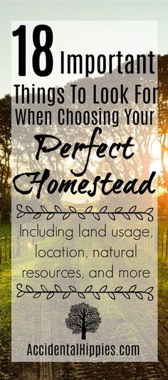 What you need to consider when you look at land for setting up a new homestead #homesteading #buyingland