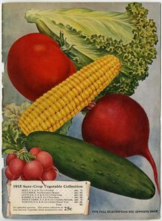 Inside The Back Cover Of 1915 Farmer Seed Nursery Catalog One Could