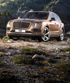 NOBEL LIEGT DIE WELT ZUGRUNDE... Dieser Bentley schafft's auf jede Bergspitze