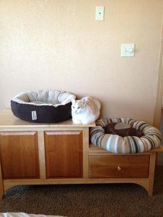 I think I'll sit right... here.