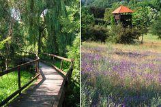 A kiválóan rendezett Sukorói Arborétum 96 hektáron mutatja be a táj növényeit, állatait. Garden Architecture, Budapest Hungary, Amazing Gardens, Botanical Gardens, Castle, Home And Garden, Europe, Places, Outdoor Decor