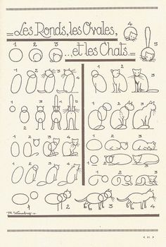 How to draw cats