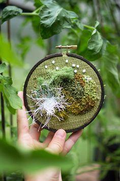 | leavingmybody:   some of my favorite moss...