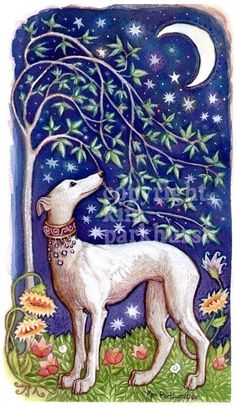 Greyhound with starry sky and moon