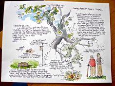 Sketchbook Wandering : Audubon Sketch Journal Project- example of nice nature journal Sketch Journal, Artist Journal, Artist Sketchbook, Sketchbook Pages, Art Journal Pages, Art Journals, Travel Journals, Journal Inspiration, Sketchbook Inspiration