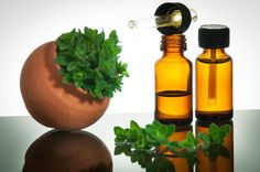 Top 50 Oregano Oil Benefits For Good Health
