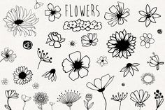 Hand drawn elements collection by mirabella.taide on @creativemarket