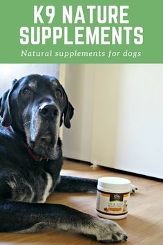 Natural joint supplements for dogs from K9 Nature Supplements