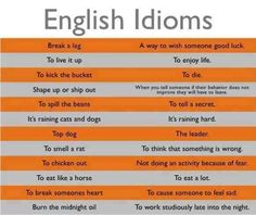 Forum | . | Fluent Land12 Common English Idioms You Should Know | Fluent Land
