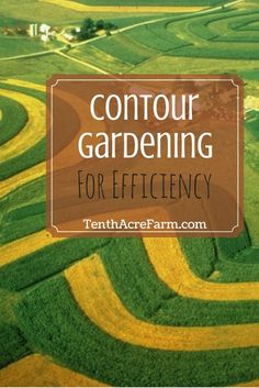 Contour Gardening for Efficiency: Use the land's contours to maximize the use of available resources for abundant harvest yields in small spaces.