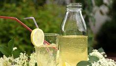 Vyzkousen: Sirup z bezovych kvetu Edible Plants, Mason Jar Wine Glass, Marmalade, Comebacks, Berries, Spices, Homemade, Fruit, Drinks
