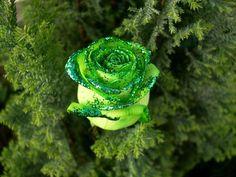 glitter roses backgrounds | Green Glitter Rose - Nature Wallpapers
