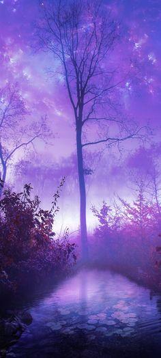 opticoverload: Morning Mist