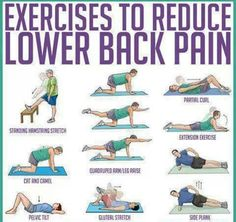 Physiotherapy with spinal hernia: a set of exercises