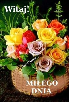 Good Night, Good Morning, Happy Birthday, Disney, Flower Arrangements, Nighty Night, Buen Dia, Happy Brithday, Bonjour