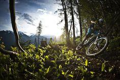 Mountain biking MTB