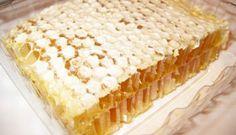Swan's Honey, Albion, ME natur energi, foods, raw comb, natur honey, swan honey, raw honey, beeswax honeycomb, natural energy, comb honey