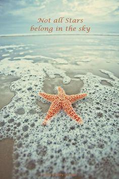 Hello Summer, Summer Of Love, Summer Beach, Ocean Beach, Summer Fun, Ocean Waves, Summer Days, Fish Ocean, Playa Beach
