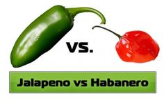 Which chili pepper do you prefer? Jalapeno peppers or habanero peppers? A comparison of the excellence of two popular chili peppers. Habanero Recipes, Jalapeno Recipes, Spicy Recipes, Pepper Recipes, Jalapeno Jelly, Stuffed Jalapeno Peppers, Habenero Salsa, Canning Recipes, Hot Sauce